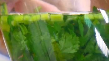 網傳喝「香菜水」可減少洗腎次數 醫師駁斥解答了