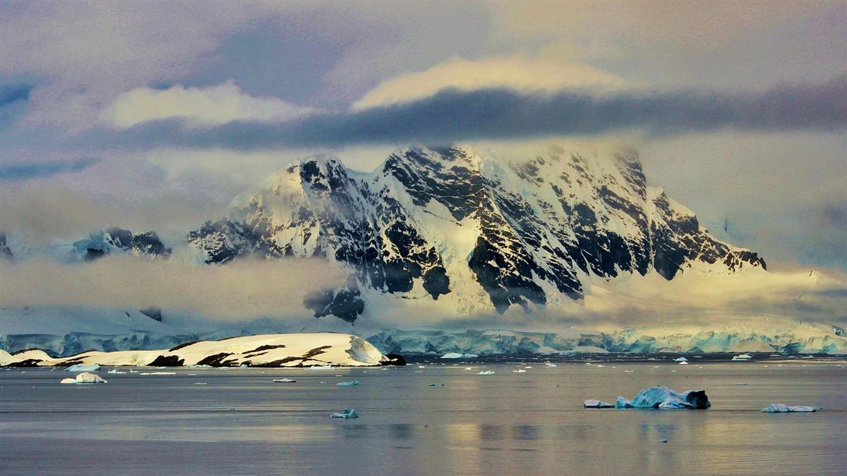 南極冰棚深海驚見「活石」 科學家嚇傻:未知生物棲息地