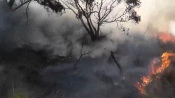 苗栗驚傳火燒山 多火點延燒如「熔岩噴發」