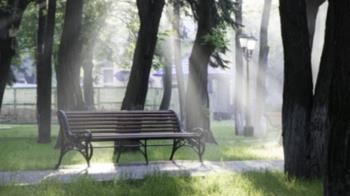 公園雙腿交纏激戰4分鐘 情侶遭譏「愛要及時」