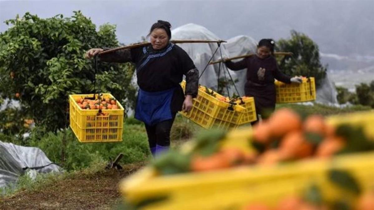 中國大陸脫貧創造「人間奇蹟」 三個關鍵數據透露的玄機