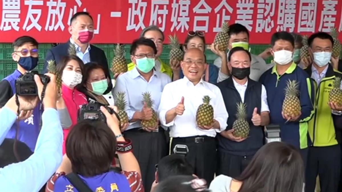 謝長廷稱賣日本鳳梨是「賣人情」 藍批:看不起台鳳梨