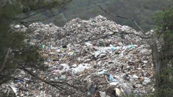 獨/新豐海岸長年受毒害 台灣最南端藻礁生長緩慢