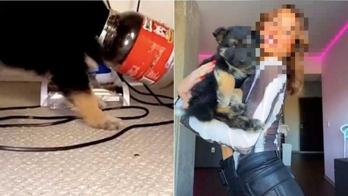 殘忍虐狗!女網紅PO影片喊「笑死」 愛狗人士氣炸