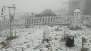 快訊/玉山下雪粒了 半小時累積0.7公分「草地全染白」