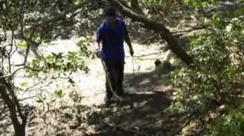 紅樹林保留區當開心漁場 男子挖馬蹄蛤遭罰2萬