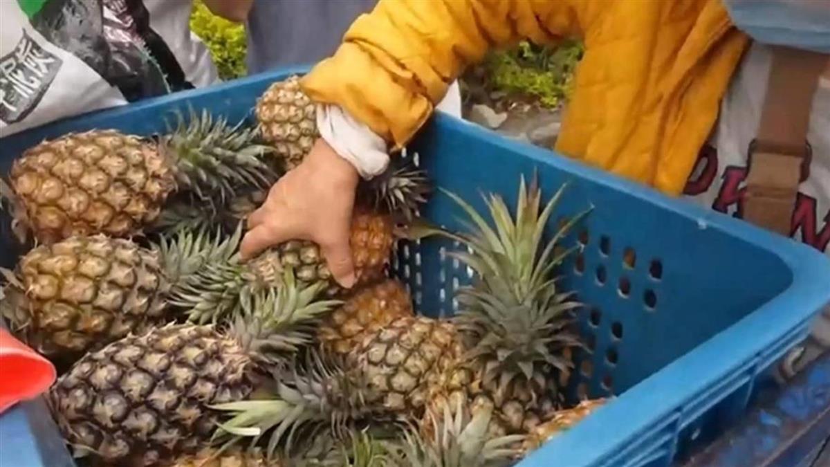 國台辦稱台灣鳳梨不合格28批次 農糧署質疑亂講