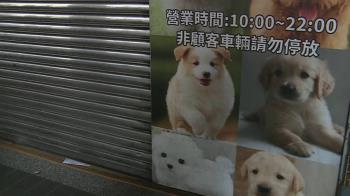 控賣病犬萌萌噠改名又重開? 動保處:查證屬實將撤照