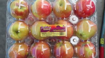 好市多「美國珍蜜蘋果」農藥超標 800箱退運、銷毀