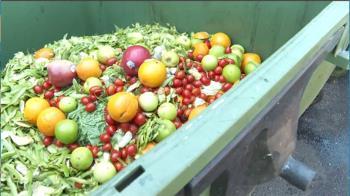 清晨5點撿垃圾車「蔬果殘渣」 婦被爆料洗後再賣