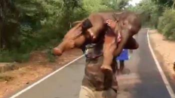 MAN到爆!100kg小象困水溝 他「秒扛上肩狂奔」找媽媽