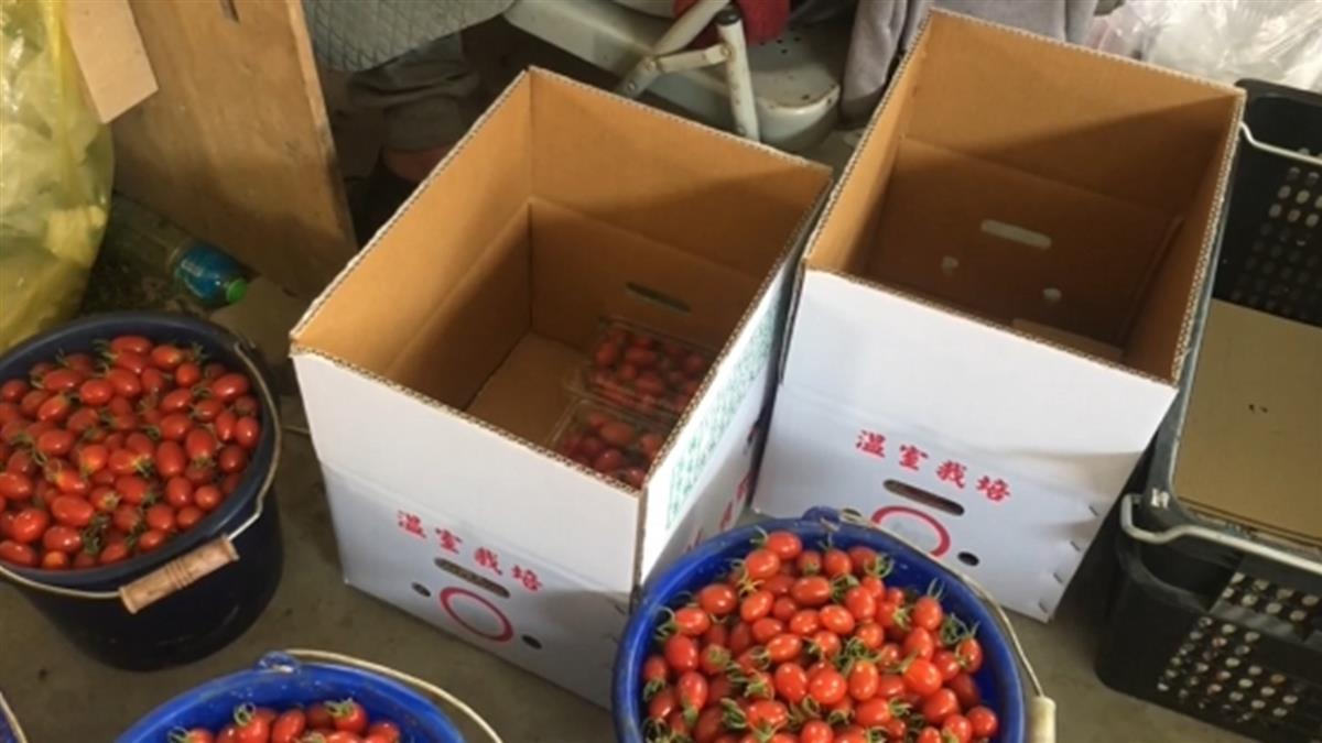 國內農用紙箱供應吃緊 業者:恐還要再漲價