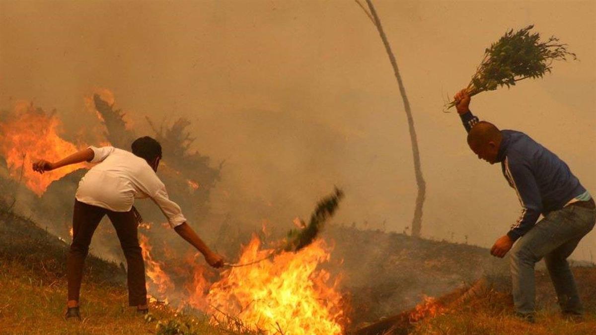 喜馬拉雅的創紀錄森林大火讓科學家們憂心忡忡