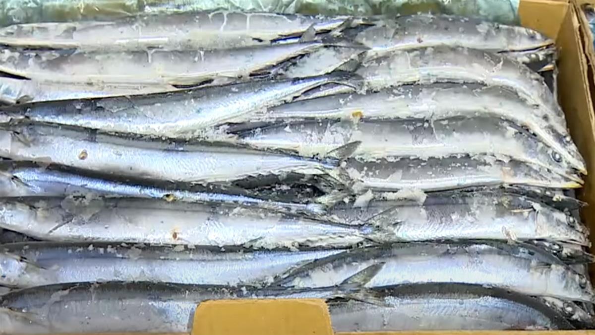 福島核汙水2年後排放 衝擊海洋海鮮生物