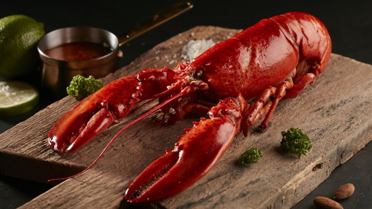 「雅婷怡君」快來!中1個字 免費吃法式紅醬龍蝦