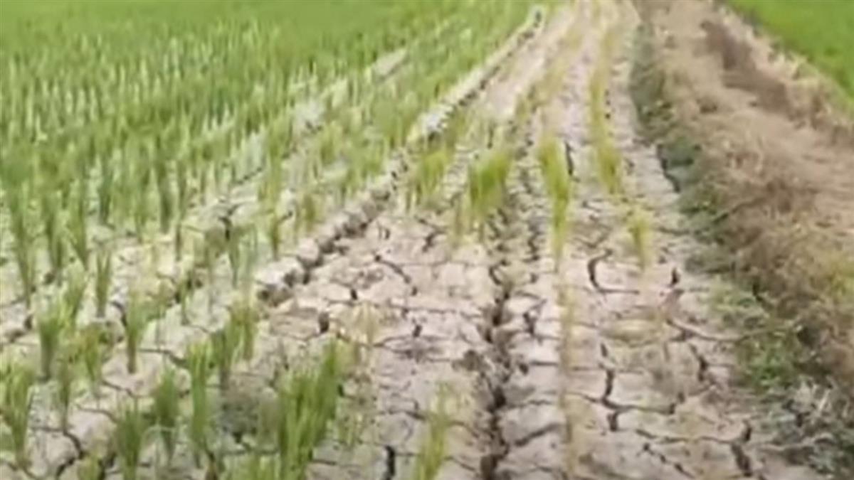籲節水文歪樓成戰南北 宜蘭人:我們忍近2個月雨天