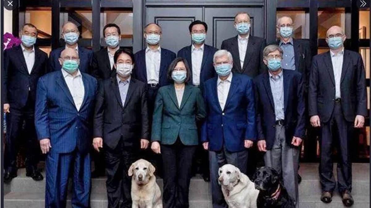 蔡總統宴請陶德狗狗入鏡 蕭美琴問:貓呢