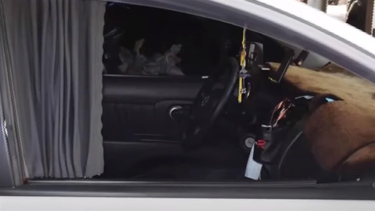 專砸副駕駛座車窗!狡猾慣竊2小時砸10車得手5千元