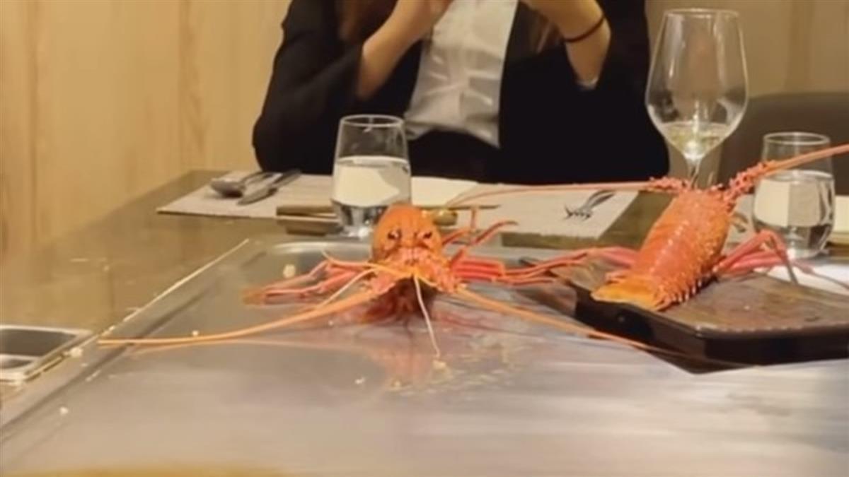 活體龍蝦「熱鐵板」上狂彈跳到死 客曝真相逆轉狠打臉