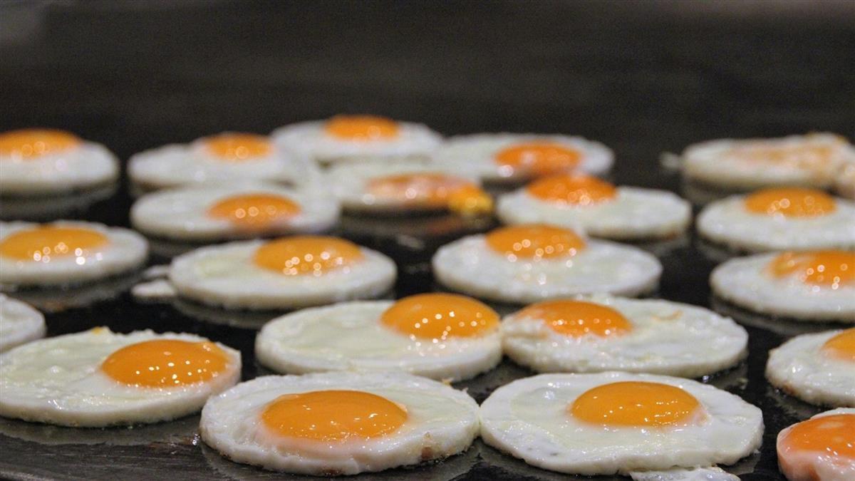 因為一顆蛋看不起年輕人 「雞肉飯理論」瘋傳引論戰