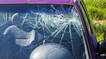 高速公路「飛來烏龜」撞破玻璃 她鮮血直流急送醫