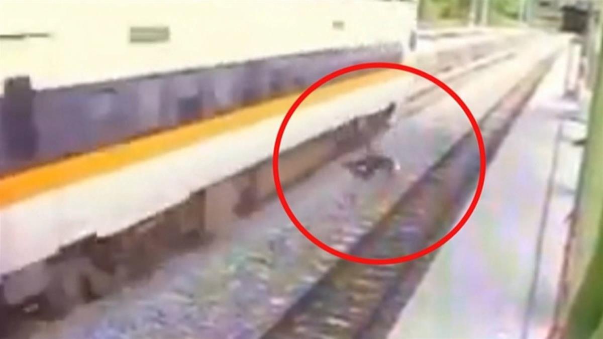 太魯閣號又出包! 工人穿越月台 列車急煞擦撞
