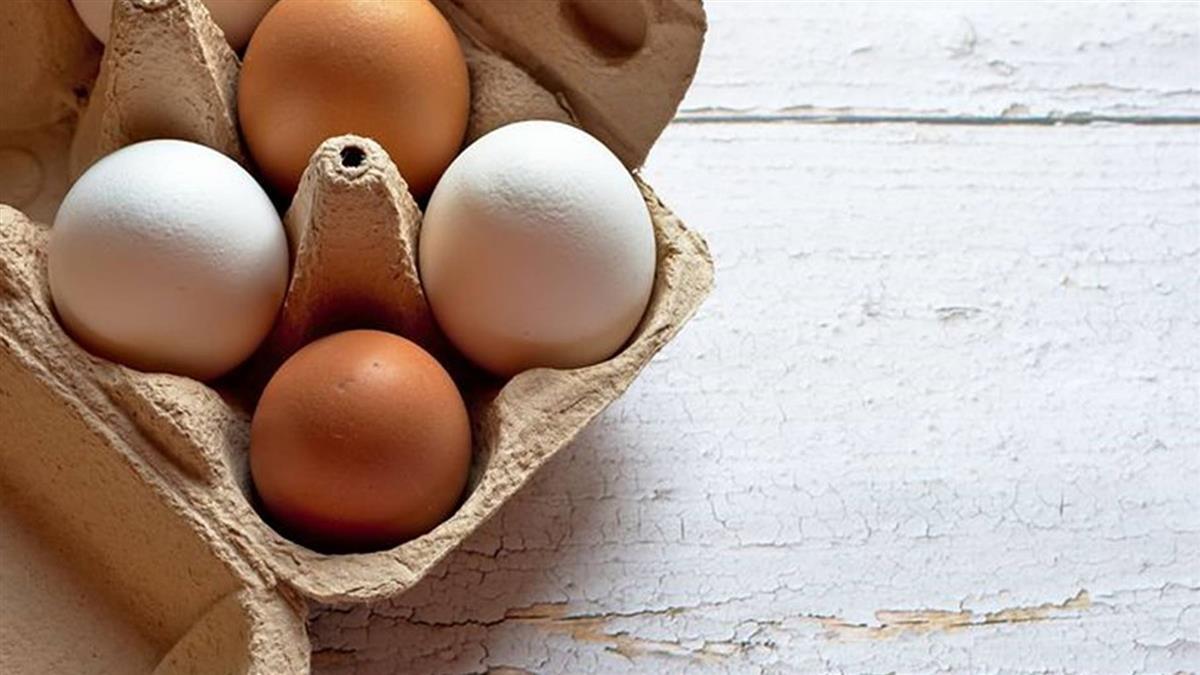 水煮蛋孵化小雞?女校長實驗稱「超能量」把40顆變回生蛋