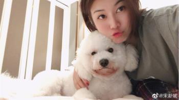 宋新妮婚後爆肥淡出演藝圈 「我愛中國」微博曬照近況曝光
