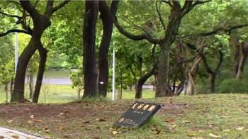 獨/說好的「姻緣」呢?! 友好櫻園不見櫻 民眾:剩牌碑像墓園