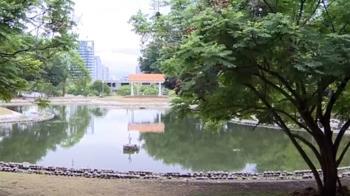 東海大學有「秘密武器」 免限水!宛如校園天龍國