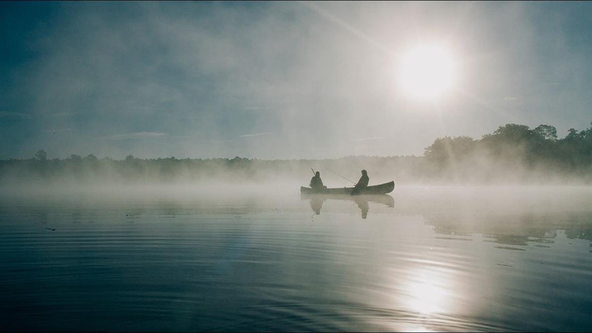 這湖泊擁8億多斤魚「至今無人敢捕撈」!遊客:是我也不敢