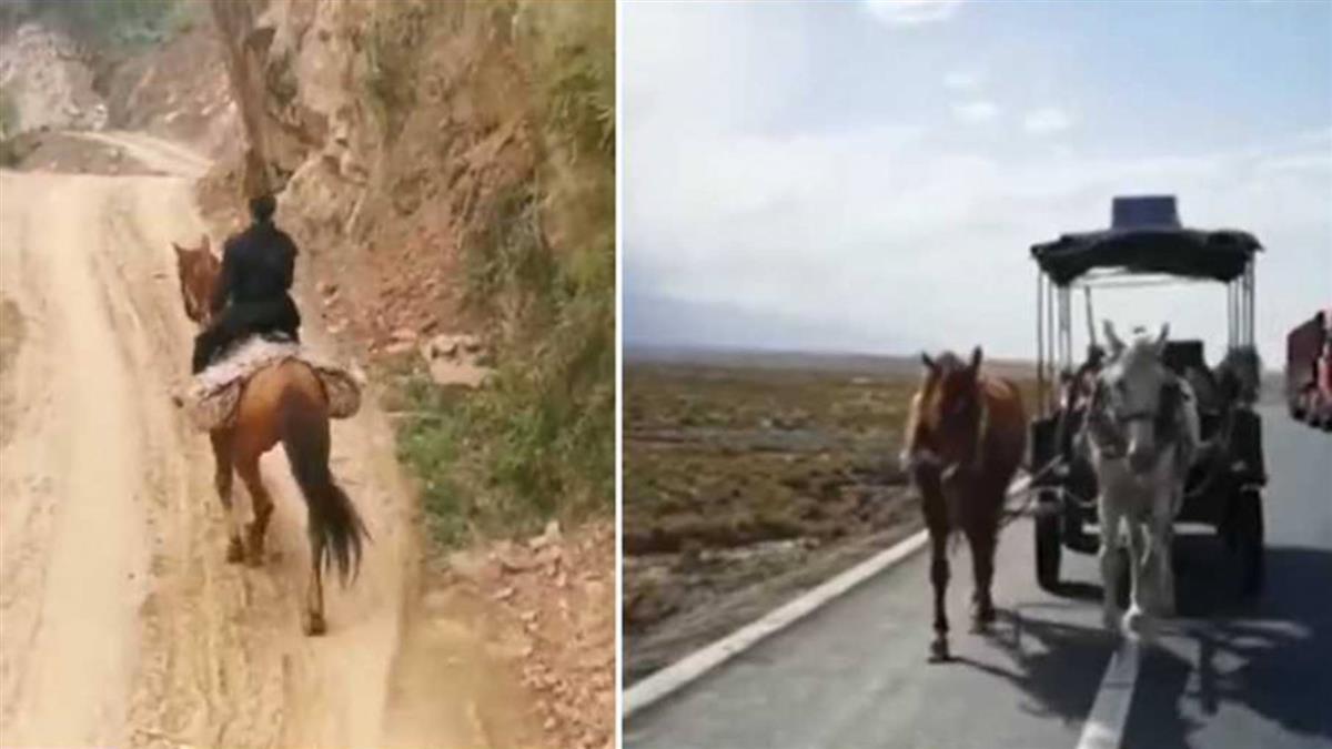回家路8000公里!他選「騎馬」…1年還沒到家 旅費已噴130萬