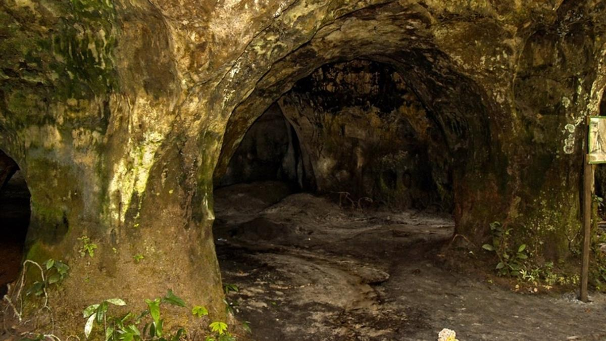 考古學新發現!洞穴發現9具尼安德塔人骨骸 生前遭獵狗追殺