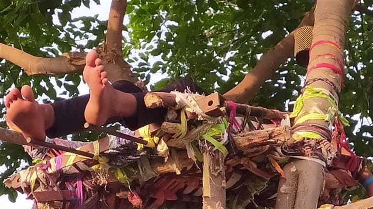 18歲男確診!床架在樹上自我隔離 近況曝光