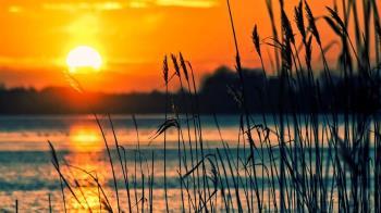 一家人湖邊慶生3溺水亡 壽星拍下「父兄溺斃過程」哭斷腸