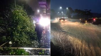 快訊/高雄豪雨強襲!路樹倒多處積水 9車10人受困