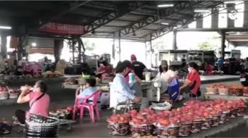 台南愛文芒果盛產卻銷不出 果農排隊送工廠搶做果乾