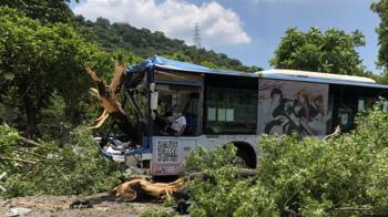 快訊/北市重大車禍!公車高速撞大樹 傷亡不明