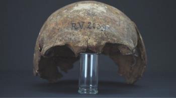 歐洲鼠疫「零號病人」?拉脫維亞發現5000多年前的感染者屍體