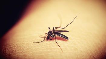 全美7州發現蚊子有「西尼羅病毒」 咬一口嚴重恐癱瘓