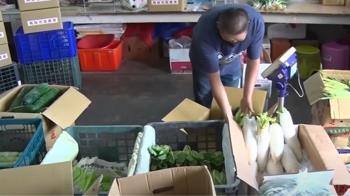 高市結合業者推蔬果箱、海味箱 滿額免運味最實在