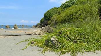 微解封未開放 高雄西子灣秘境沙灘有人想硬闖