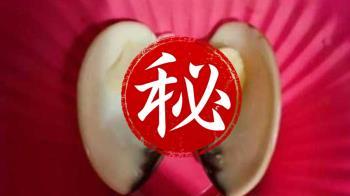 煮熟蛤蜊吐超巨螺絲 網笑:這是它的心臟支架吧