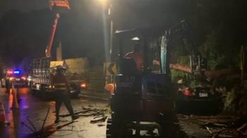 颱風強勁雨勢釀災!5棵路樹倒塌壓毀路邊車輛