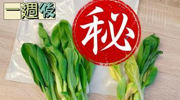 青菜放7天還是超鮮脆!婆媽實驗好市多保鮮神物:完勝報紙