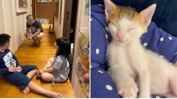 郁方尪撿到3幼貓!竟秒變2000萬富翁:機率很低