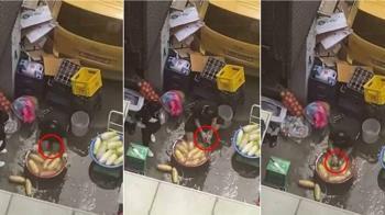 餐廳員工拿「洗腳水+菜瓜布」擦蘿蔔 網友震驚:以為在國外