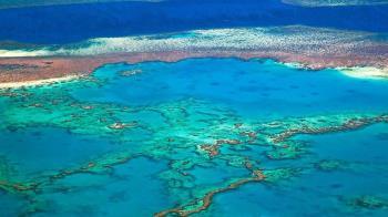 澳洲大堡礁名列世界遺產40年後面臨的「降級」危機