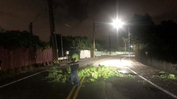 暴雨襲高雄!路樹倒塌交通受阻 仁武警及時排除