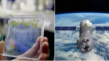 把種子送到太空「再帶回地球種」 科學家驚:突變了